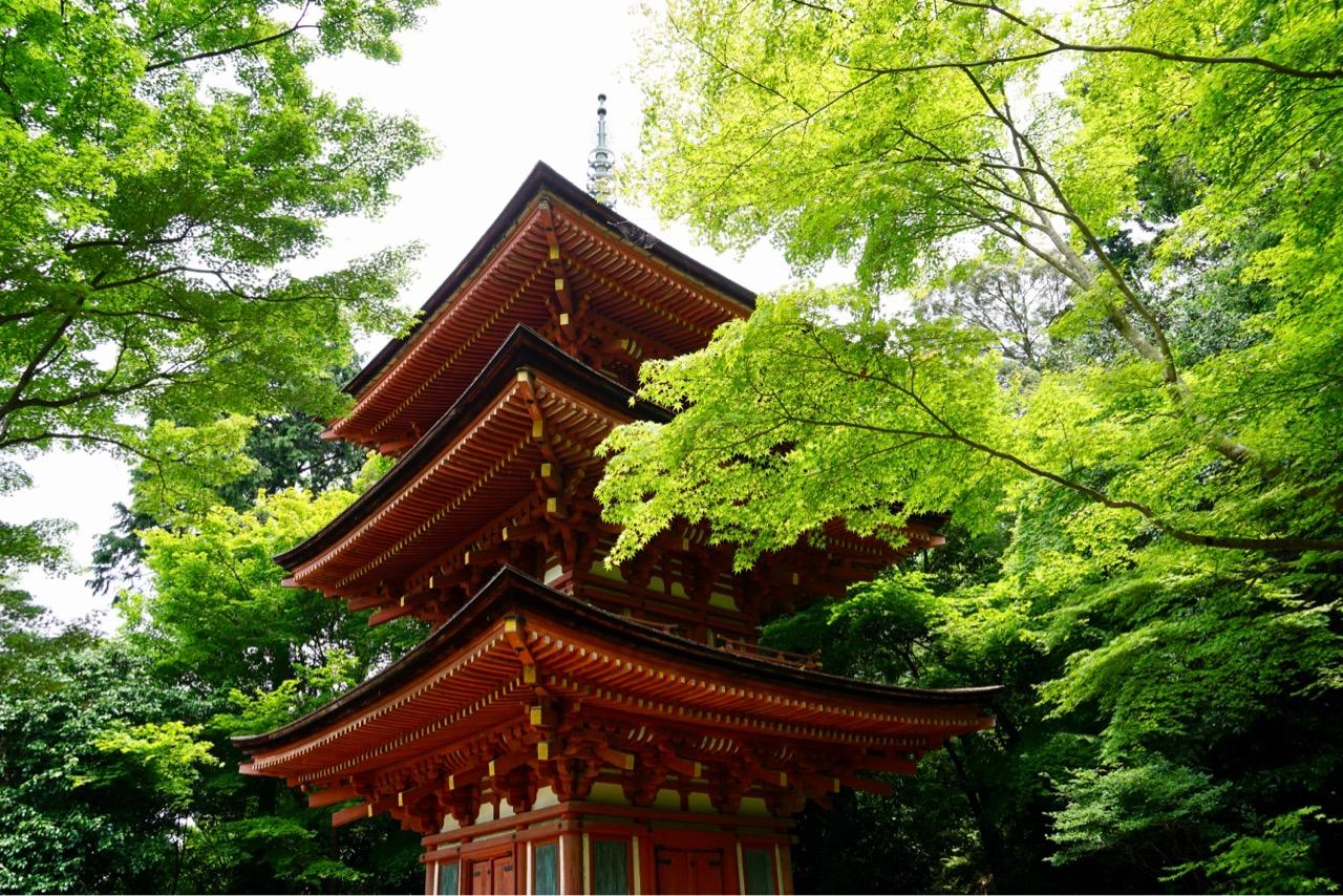 近くには浄瑠璃寺があります。