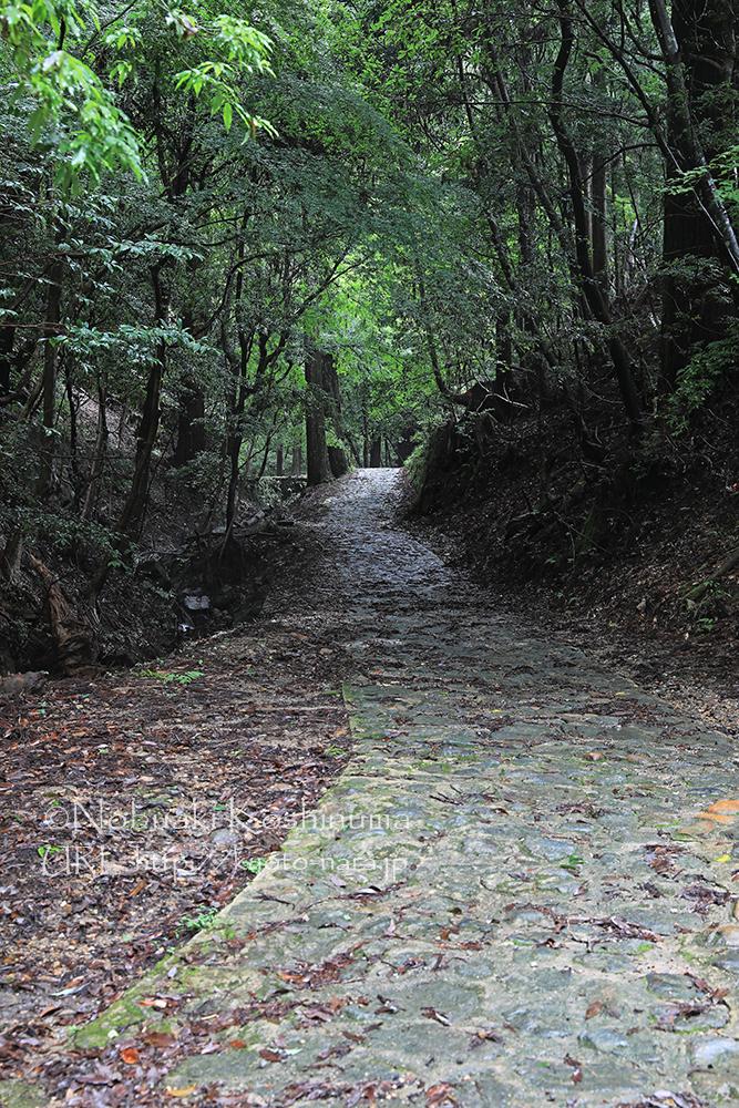 趣きのある石畳の道が続きます。