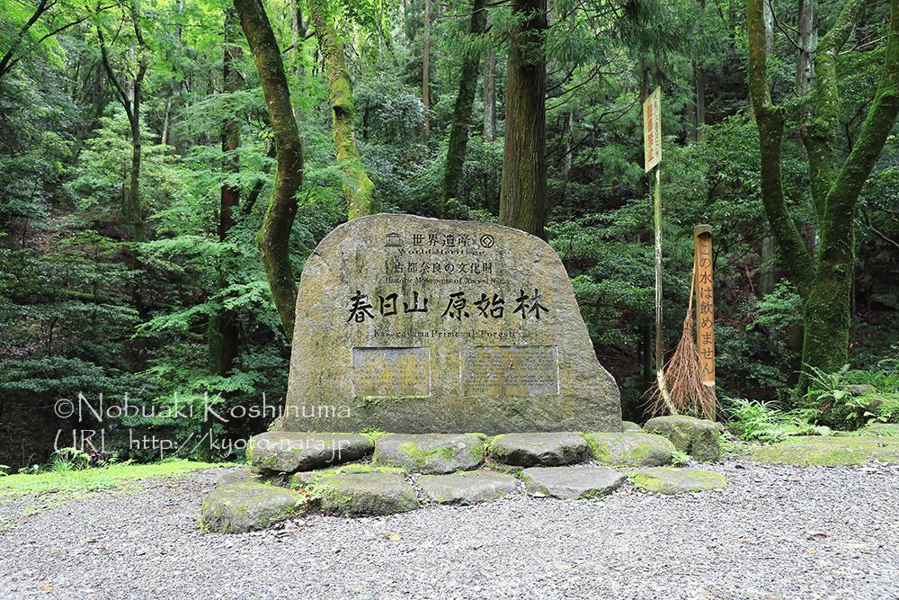 遊歩道を歩いていると現れる大きな石碑。