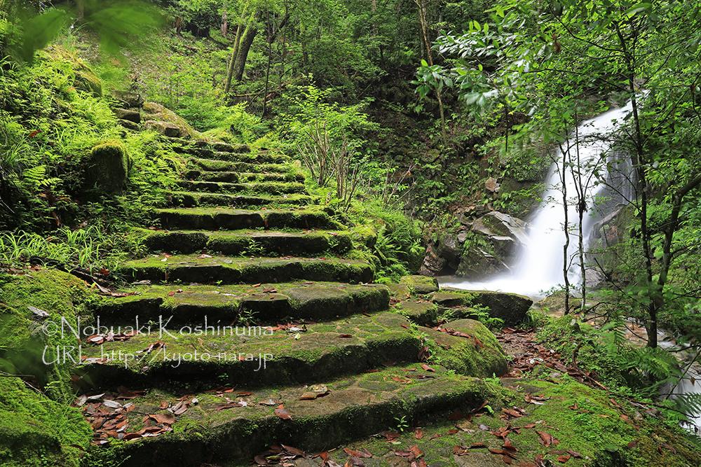 高さ10mほどの「鶯(うぐいす)の滝」。ものすごい水量でした。