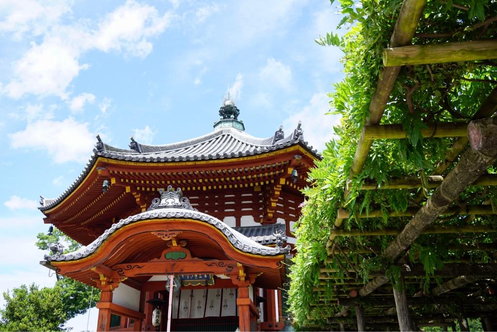 興福寺南円堂 こちらも緑が綺麗です。