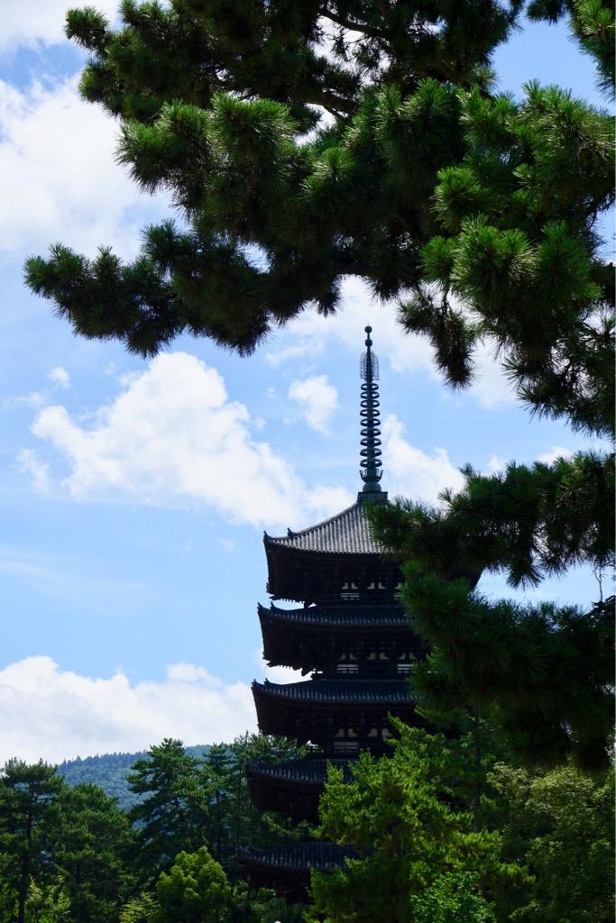 興福寺五重塔 緑が濃すぎ、っていうくらいで豪快な姿でした。