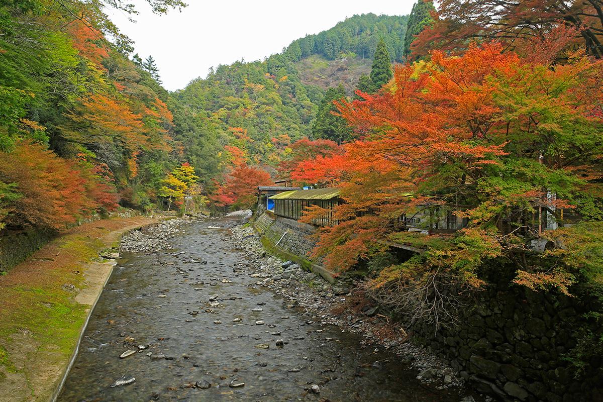 高雄橋の上から西明寺方向