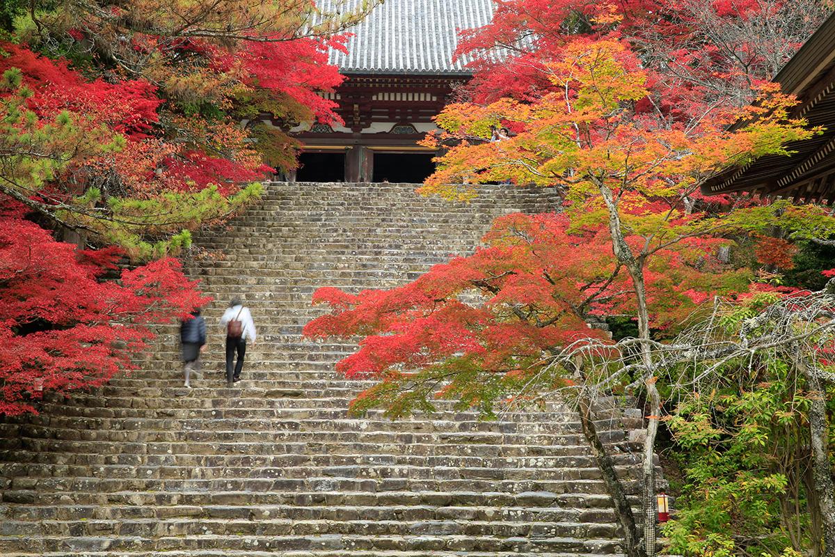 趣きある石階段を上がると金堂が。