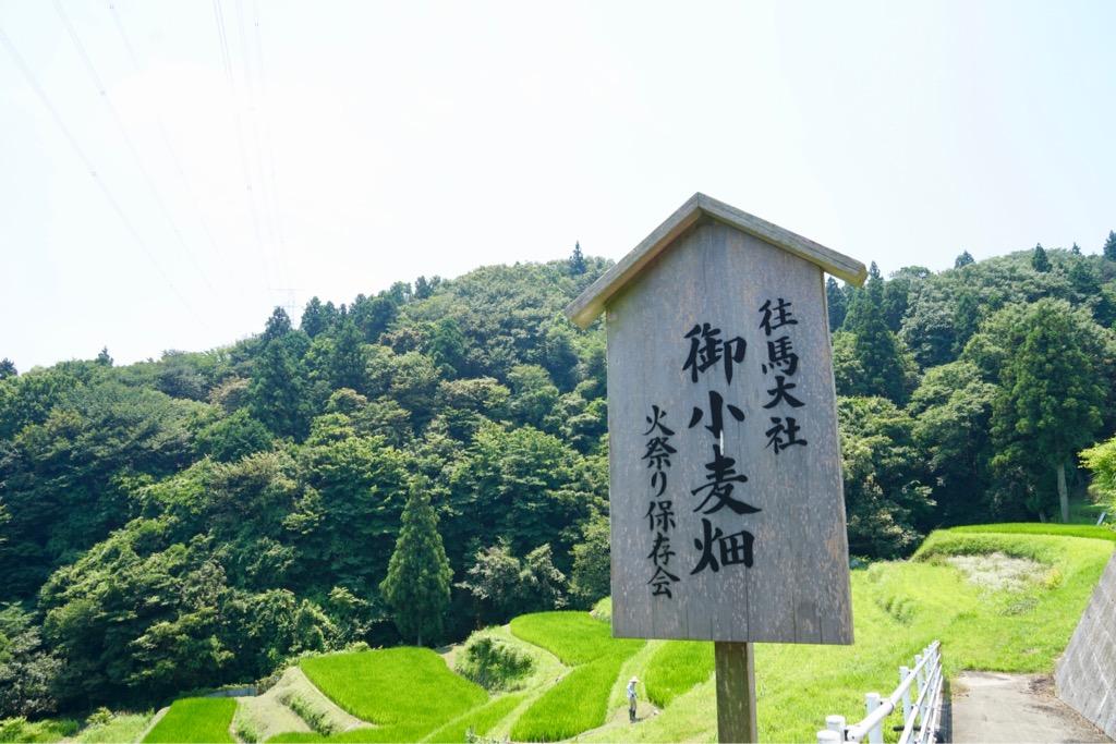 生駒大社御小麦畑 火祭り保存会の看板