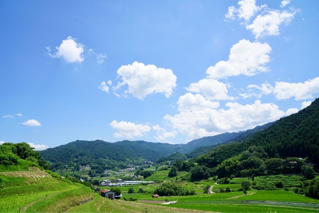 水田と山々、そして青い空が美しくて素晴らしい景色です。