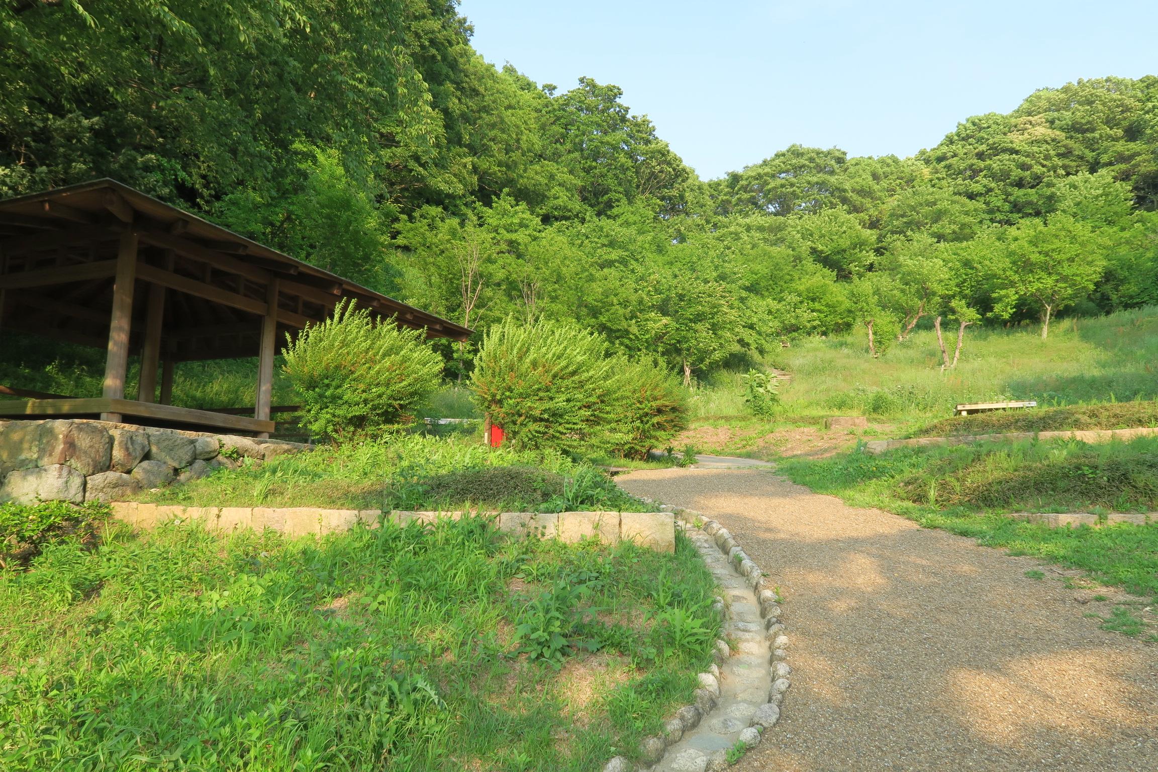 緑に囲まれた雰囲気のいい休憩所。のんびり読書でもしてみたいですね。