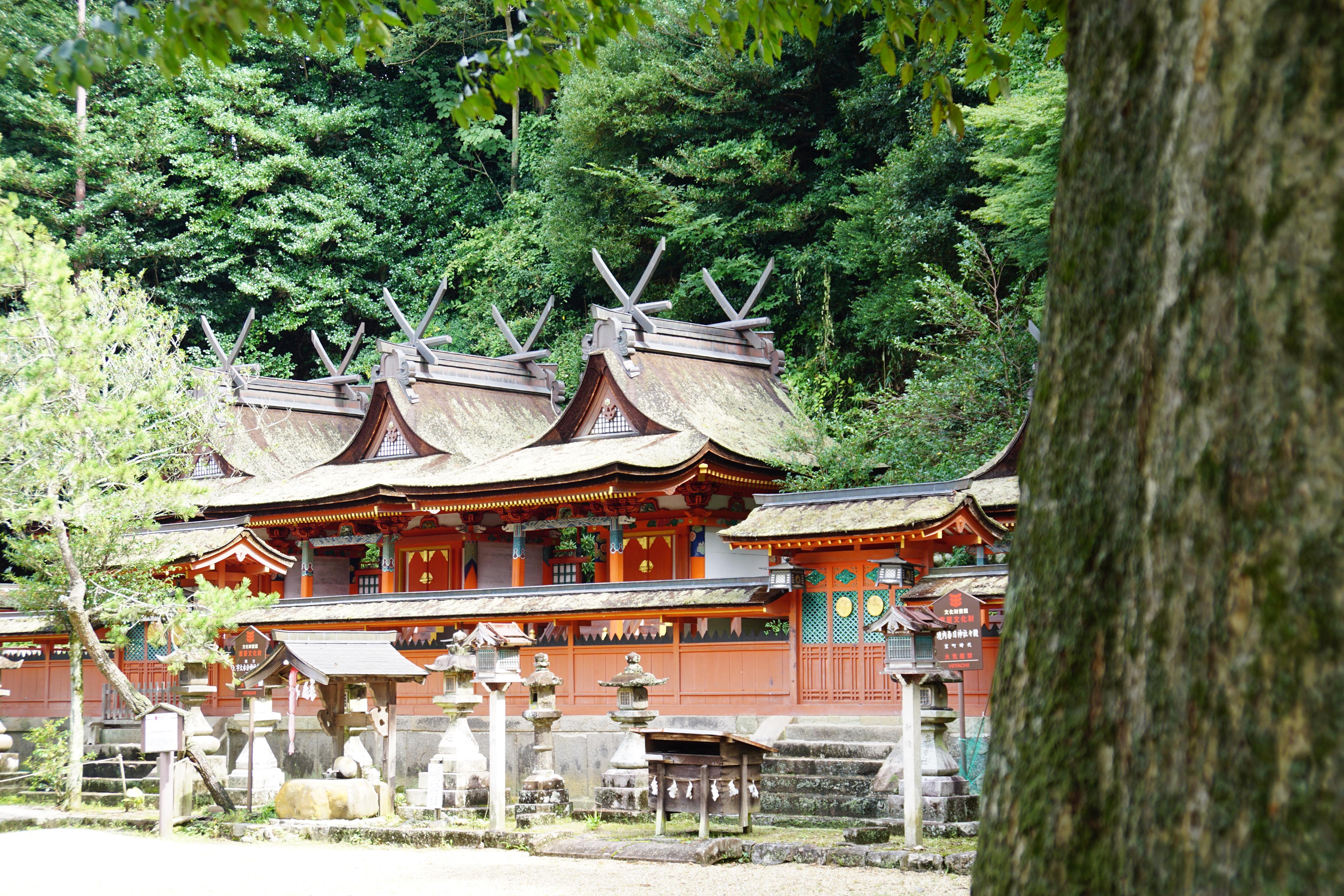 近くには宇太水分神社があります。雰囲気があって素敵でした。
