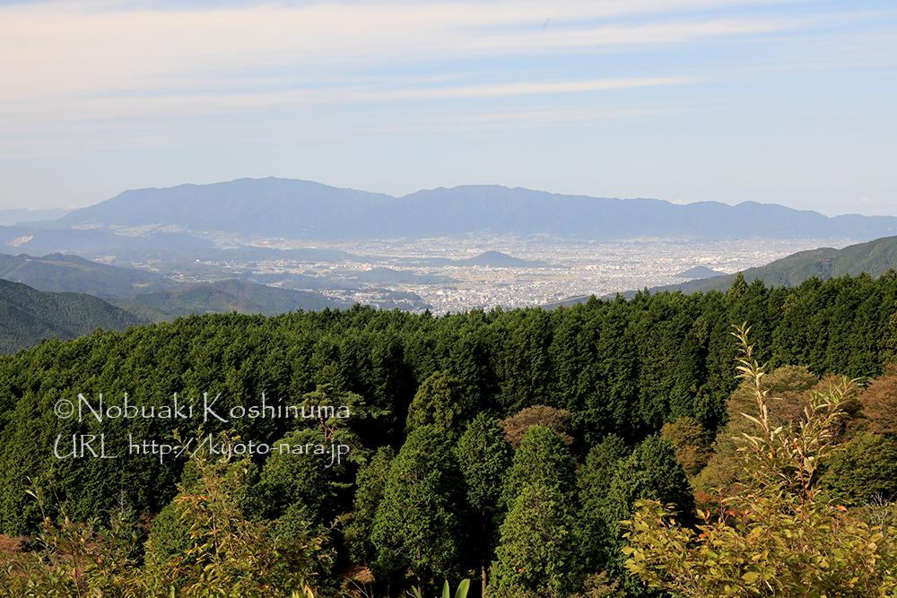 展望台からの眺め。大和三山も見えます。