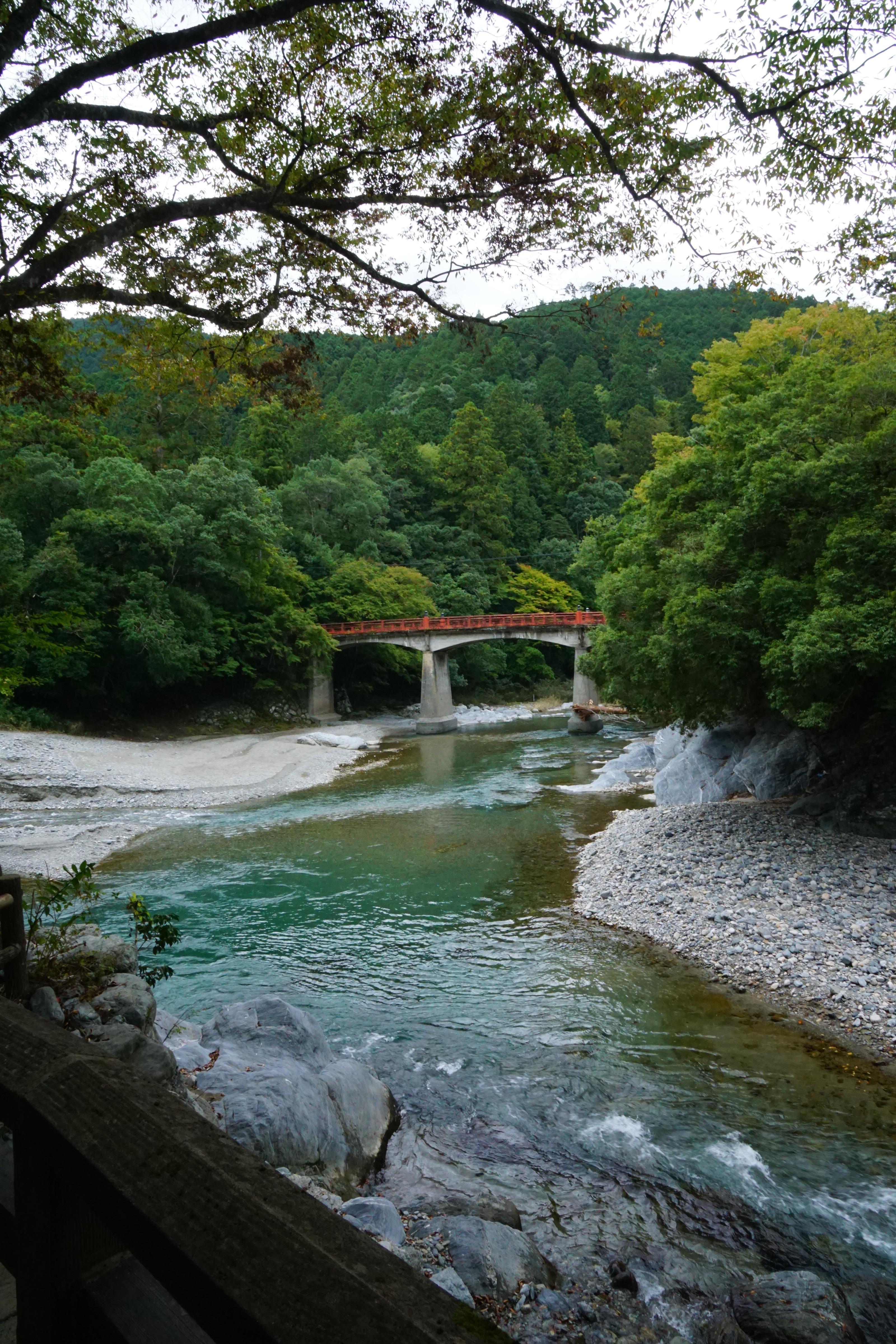 丹生川上神社へ。前に川が流れ素晴らしい景色でした。