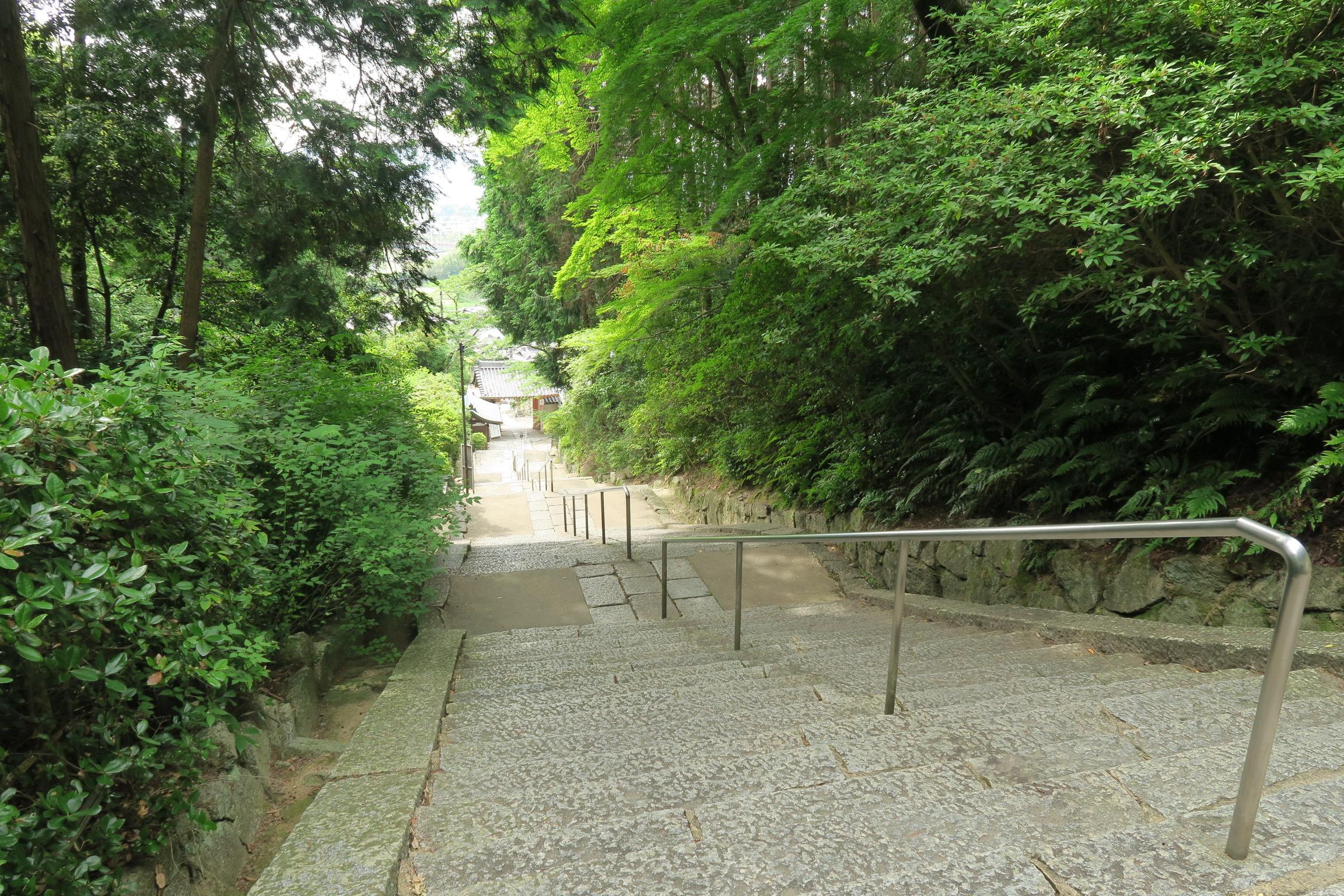 階段を上り、振り返ってみると・・・。