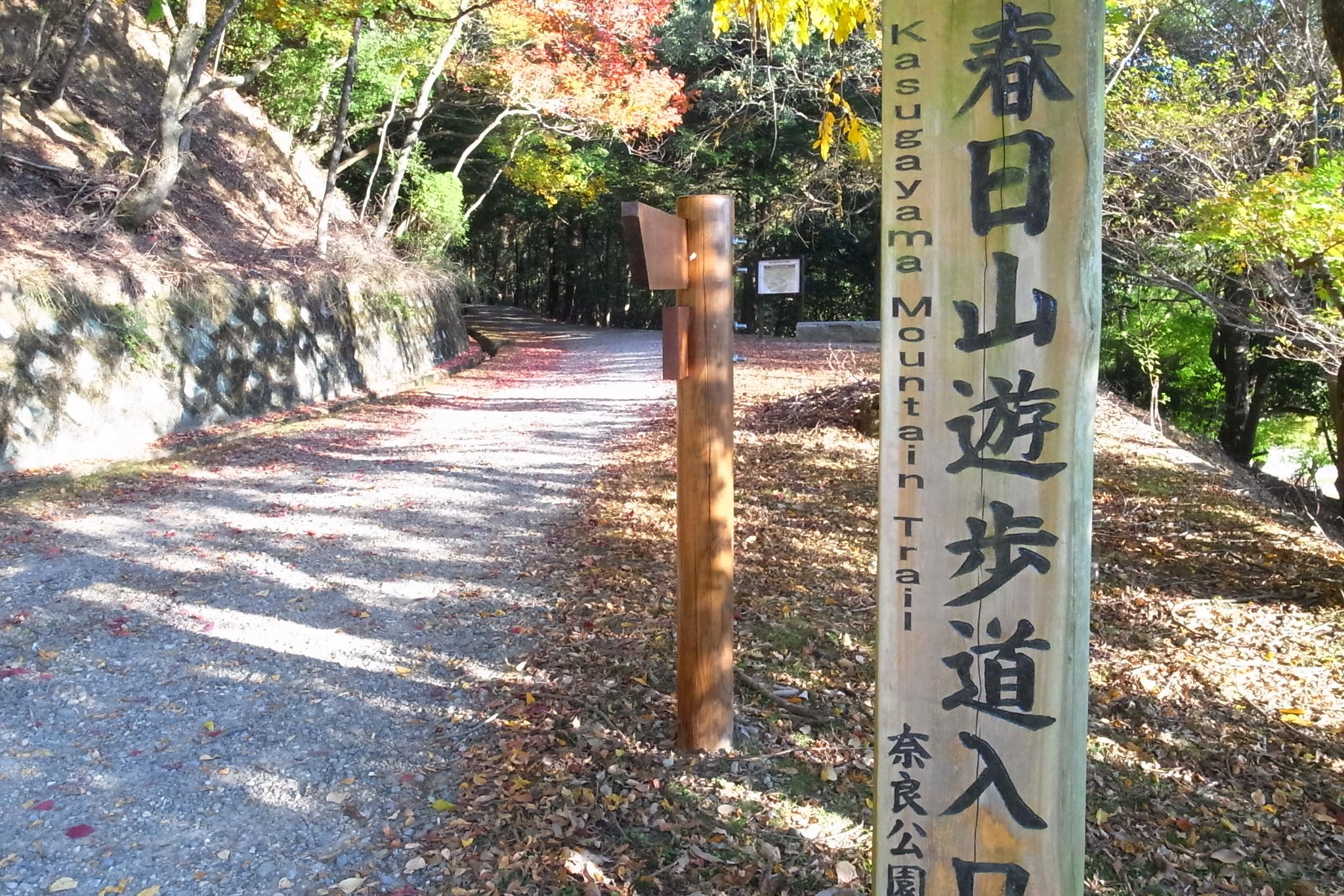 春日山遊歩道入口。しゅっぱ~つ。