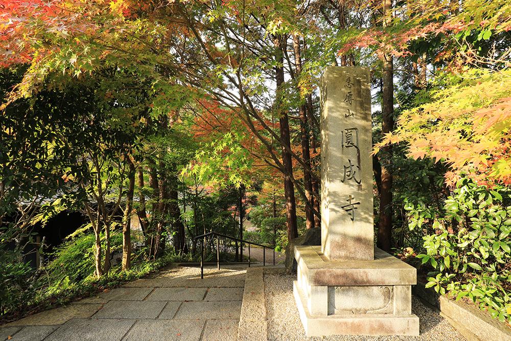 道沿いにある円成寺の案内石柱。