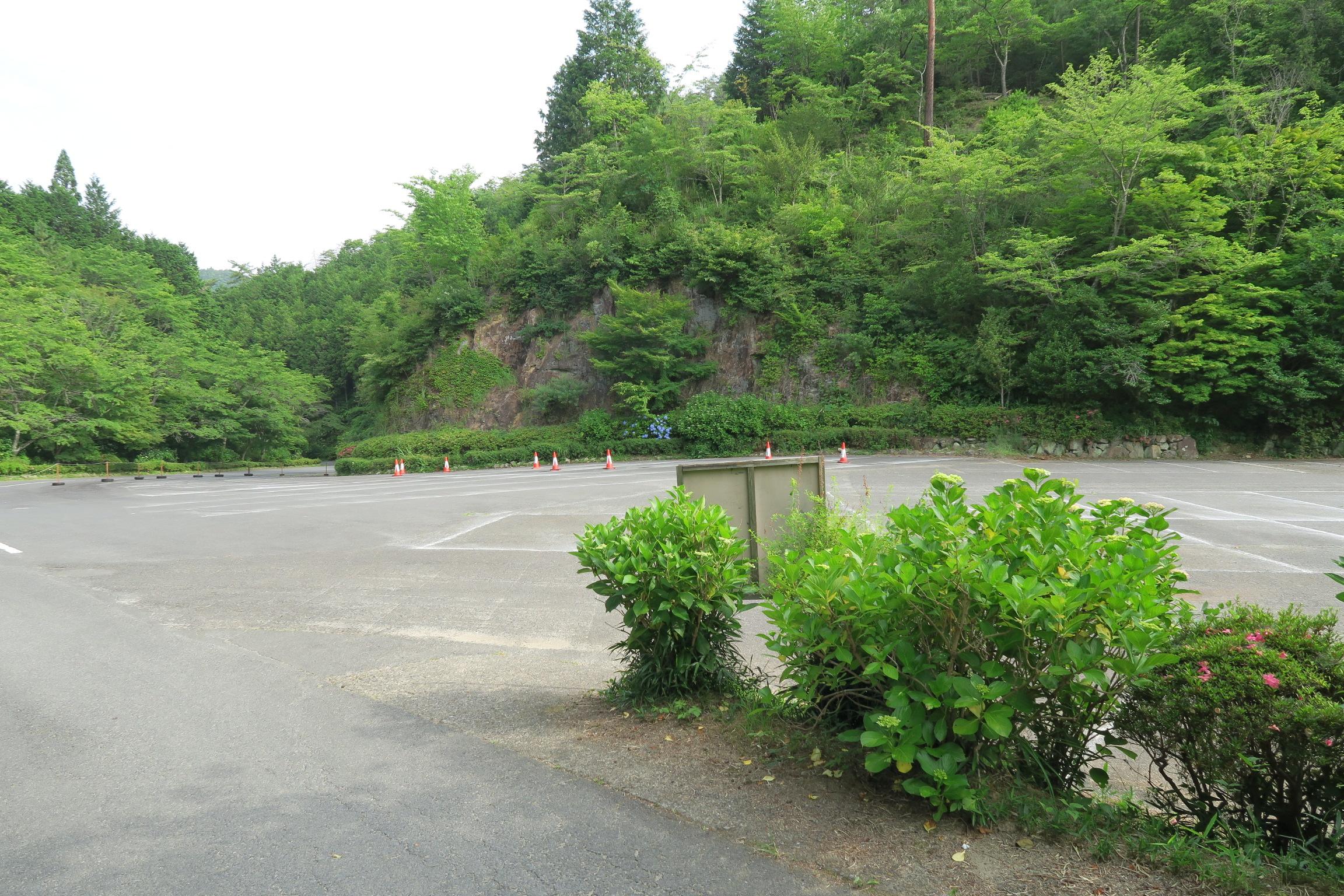 しょうぶ園の横にある大駐車場。朝イチなので、まだ車なし。。。