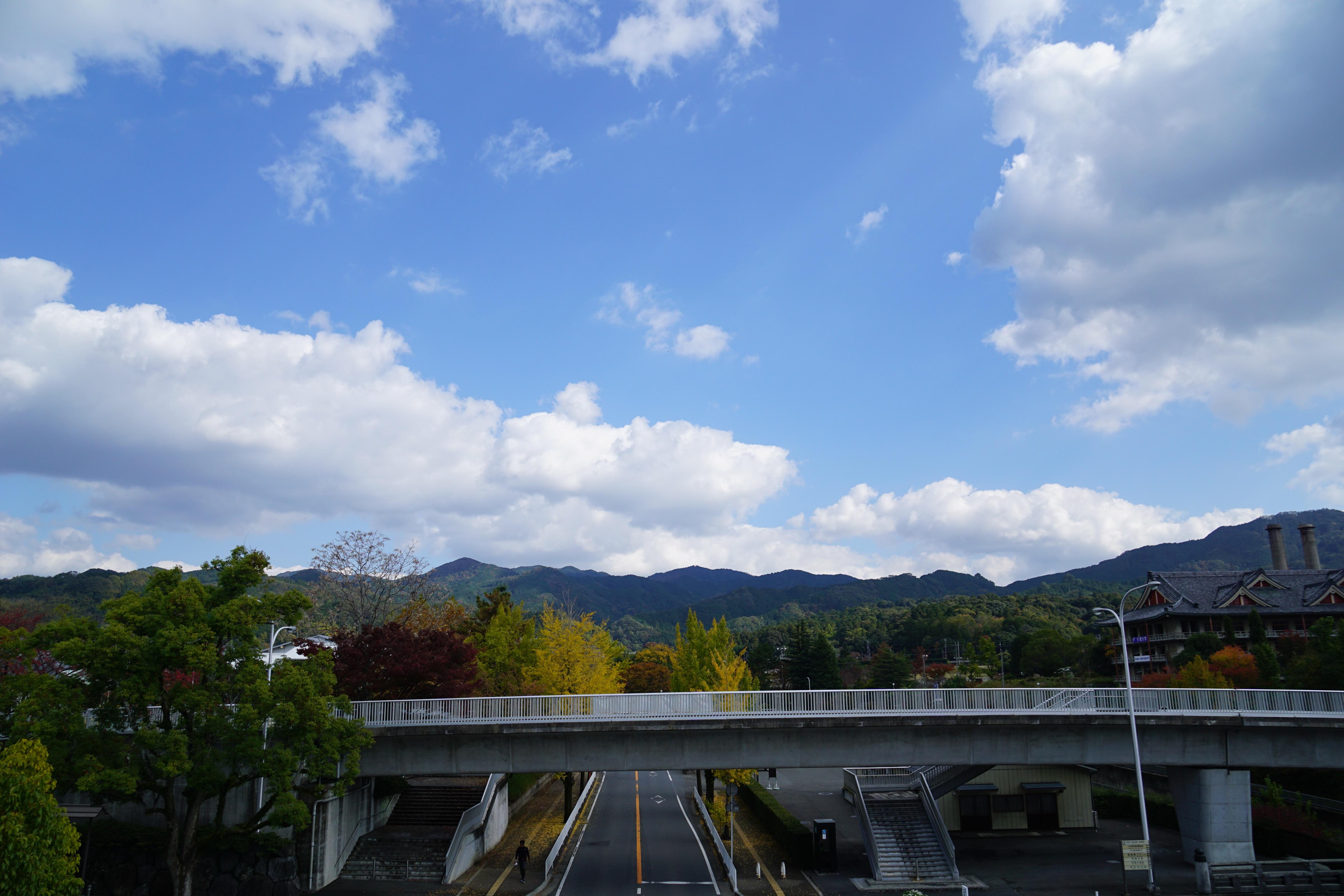天理大学と山辺の山並み。なんて風光明媚な大学なんでしょう。