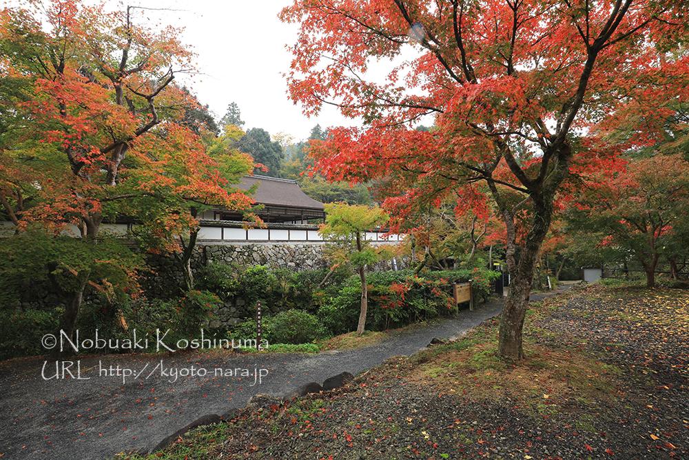 奈良市菩提山町の正暦寺に行ってきました。