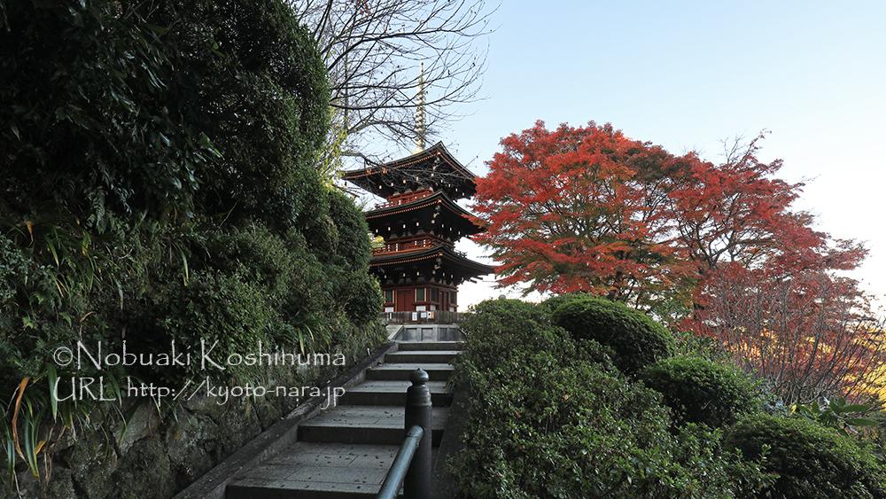三重塔横の紅葉が見事でした。