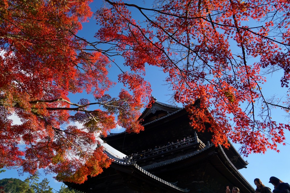 歩いてすぐの南禅寺。久しぶりで大きさに圧倒されました。