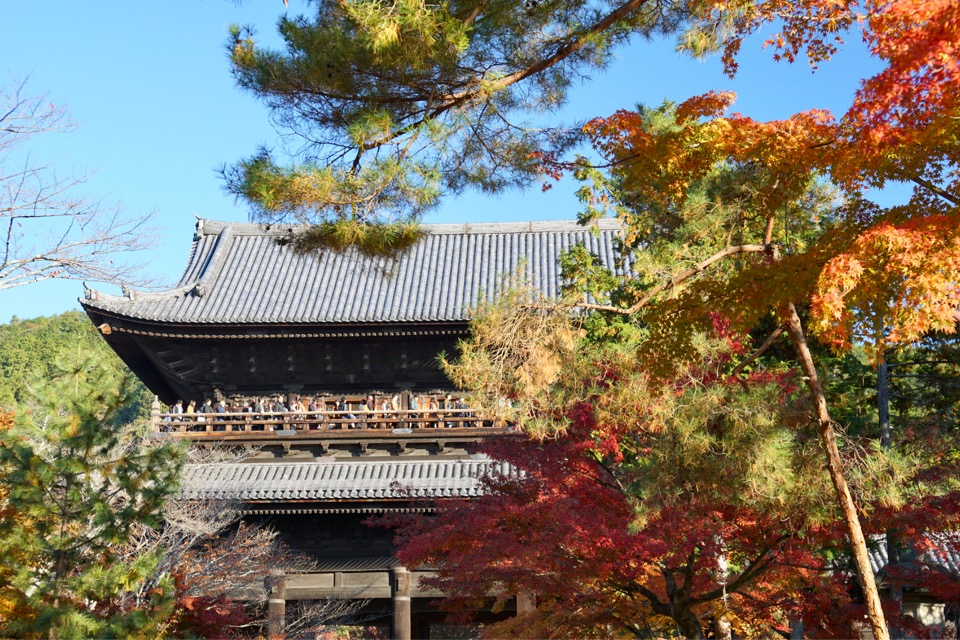 広い境内には真っ赤に色付く紅葉がいっぱい。