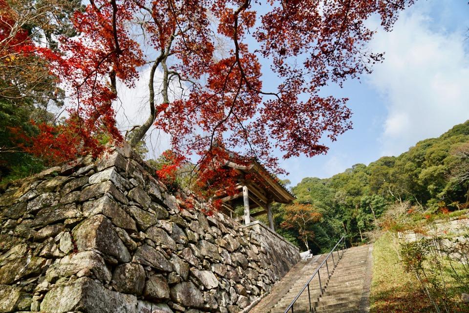 正暦時 紅葉がとても綺麗でした。