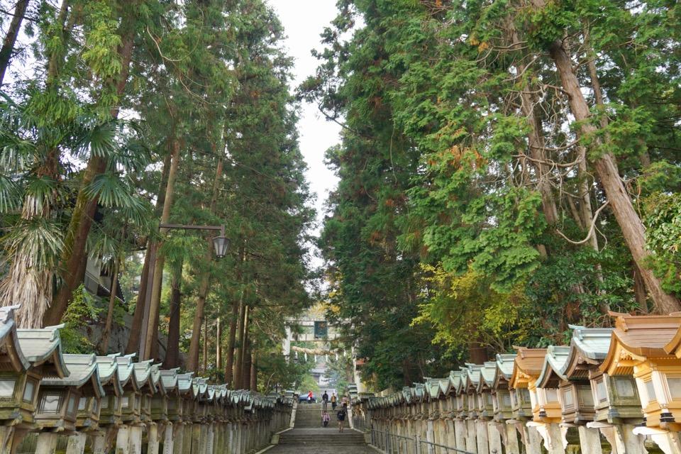 宝山寺参道。とても美しいです。