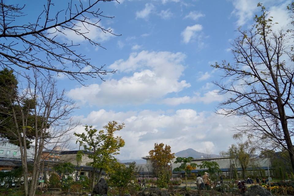 比叡山が見えます。