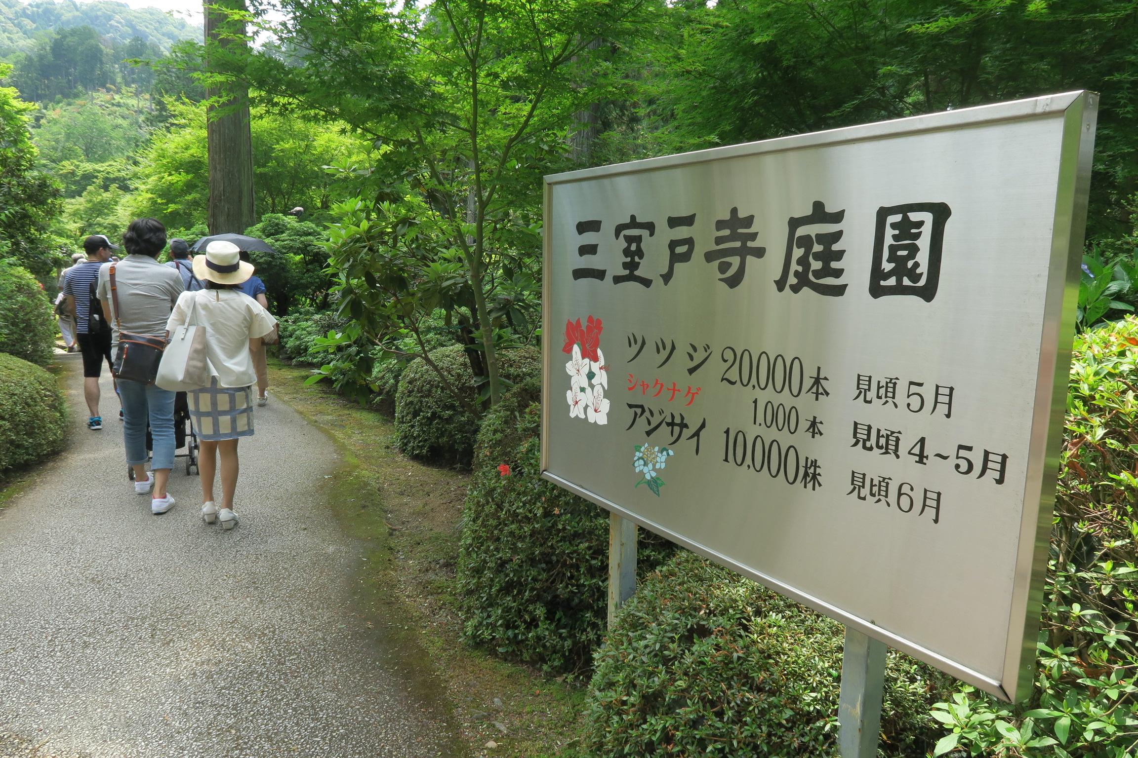 三室戸寺庭園の入口。