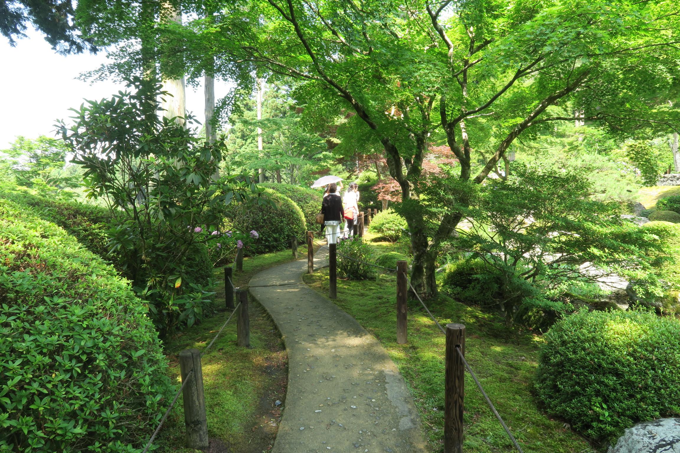 木陰も多い庭園。