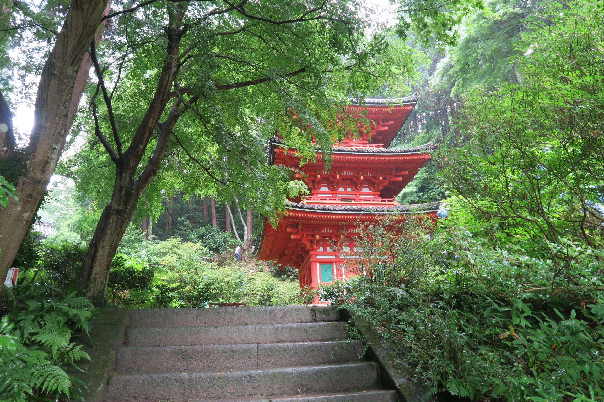 緑に覆われ、三重塔とのコントラストが美しいですね。重要文化財です。
