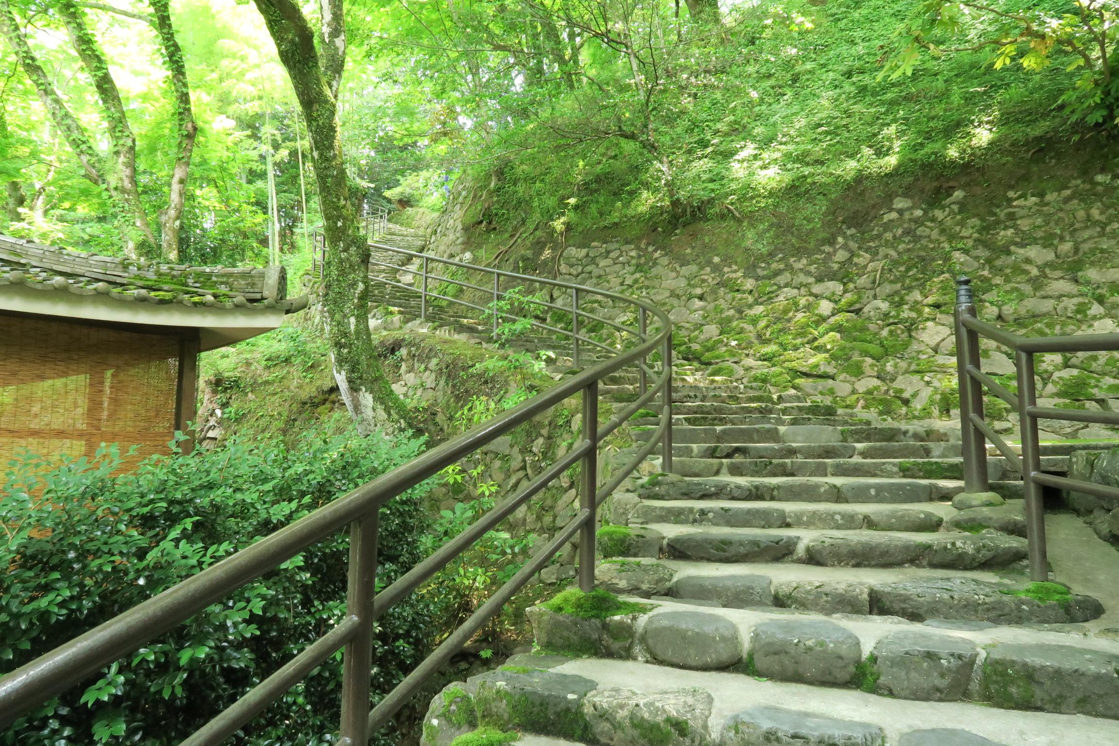 本坊より100mほど手前にある階段を登ると・・・。