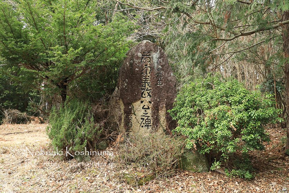 石碑もありましたが、特に案内版もなく詳細不明。