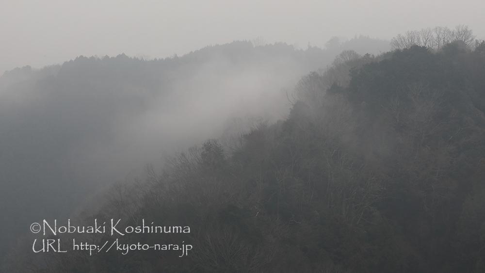 月ヶ瀬周辺の山が霧に包まれます。