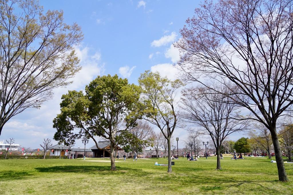 広々とした公園があり、その周りに屋台も出て賑わっていました。