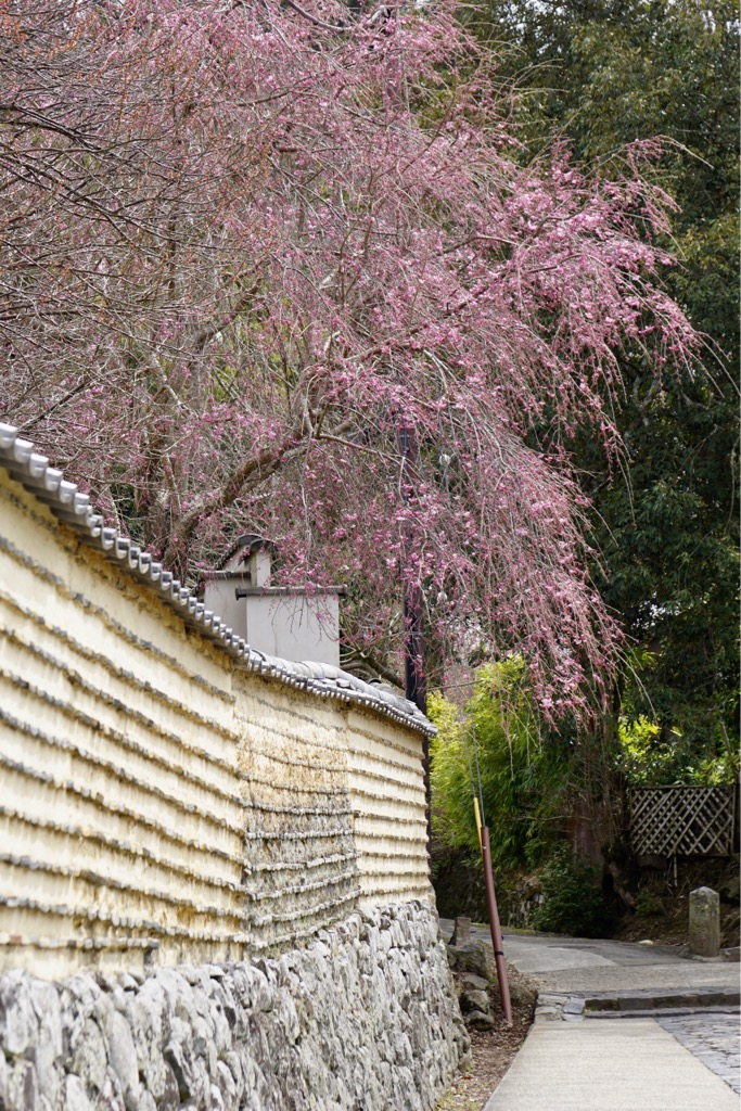 東大寺二月堂へ