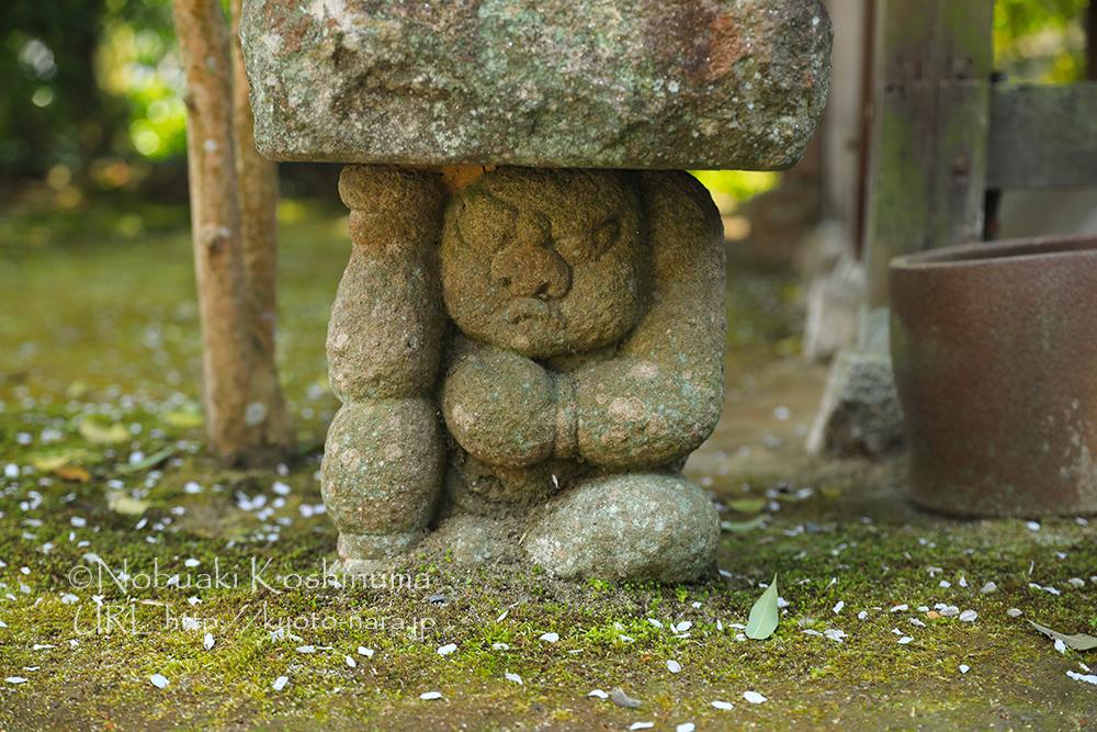岩屋寺の境内にて桜観賞をする石仏。愛嬌のある顔ですね。