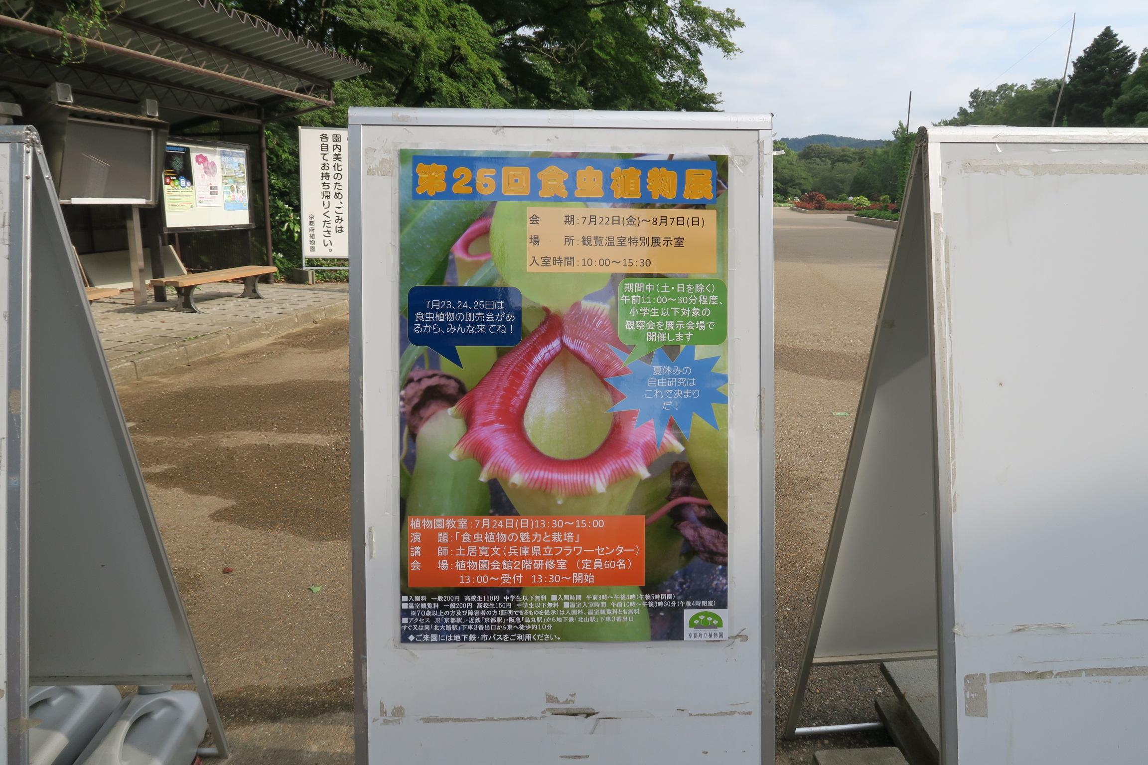 8/7まで食虫植物展。午前11時~30分程度、小学生以下対象の観察会が開催されています!