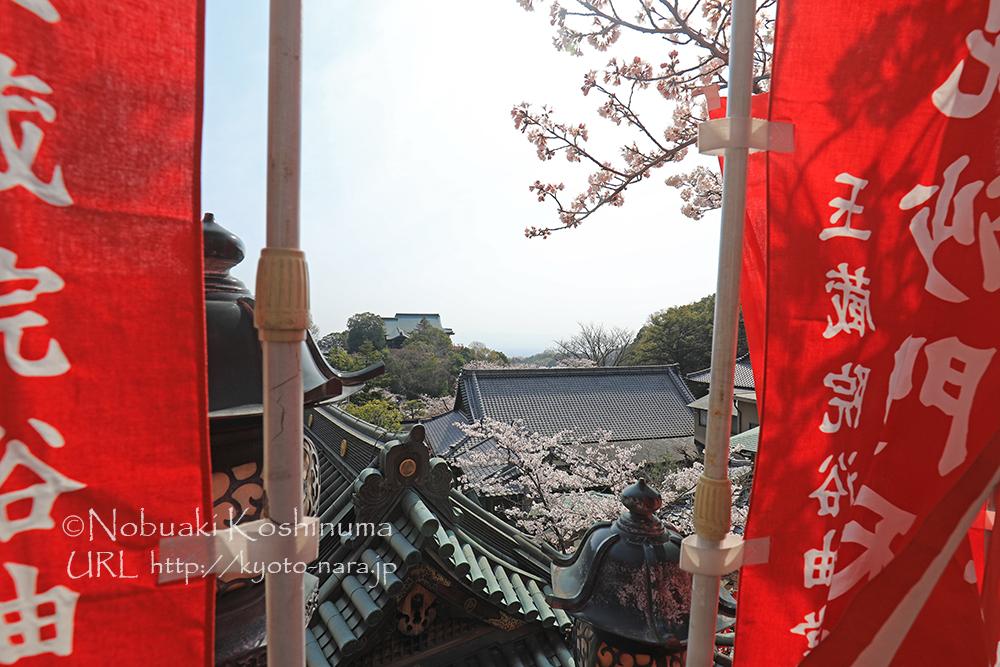 信貴山朝護孫子寺は、眺めのよい所が多いので広い境内も苦になりません。