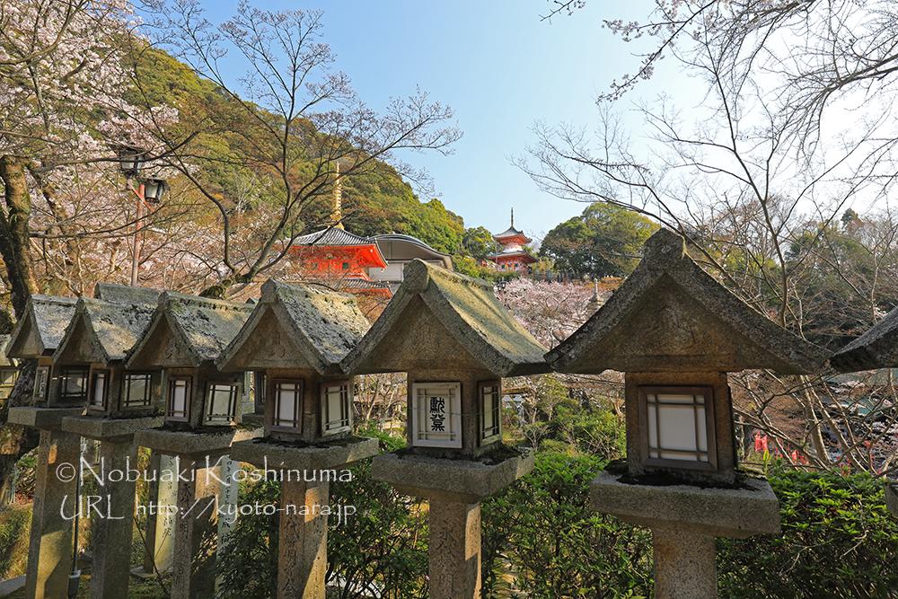 中央の多宝塔は江戸時代の元禄2年に建立されたもの。中央左手の成福院 融通殿。