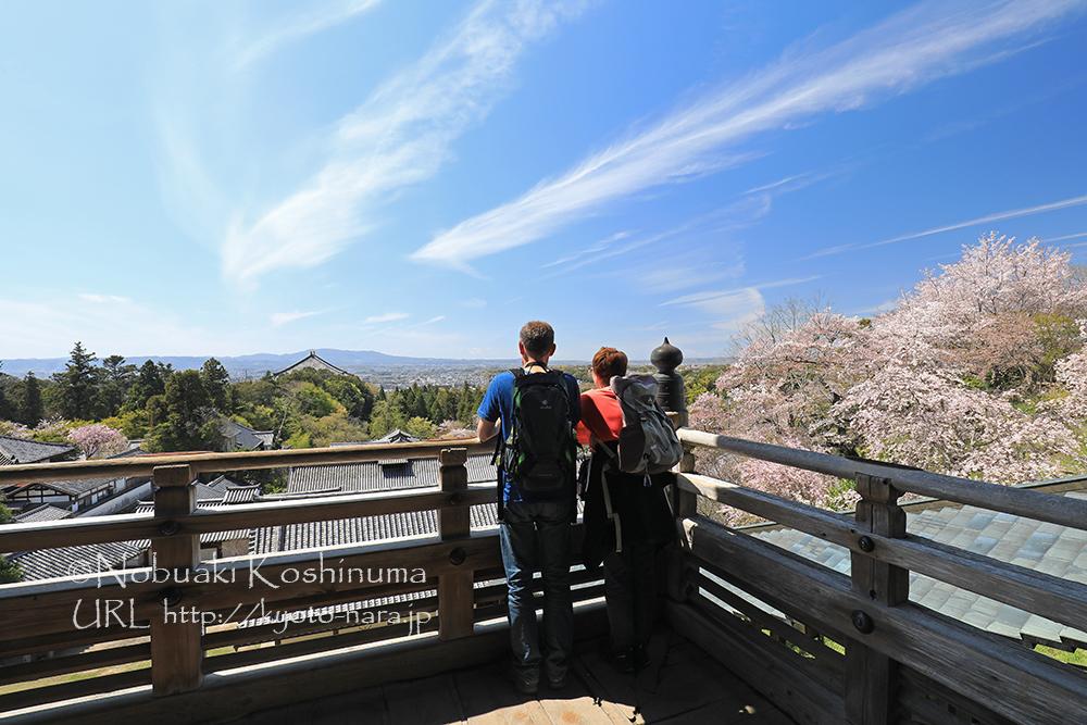 東大寺・二月堂からの眺め。拡がる青空の中、2頭の龍が大仏殿に向かっているようにも見えますね。