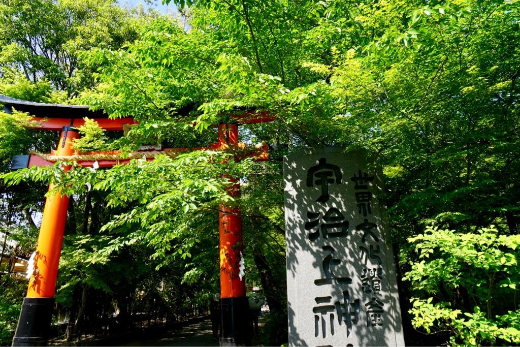 近くには世界遺産の宇治上神社があります。