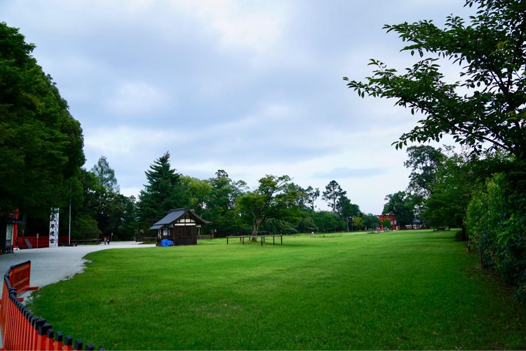 芝の緑が美しいです。