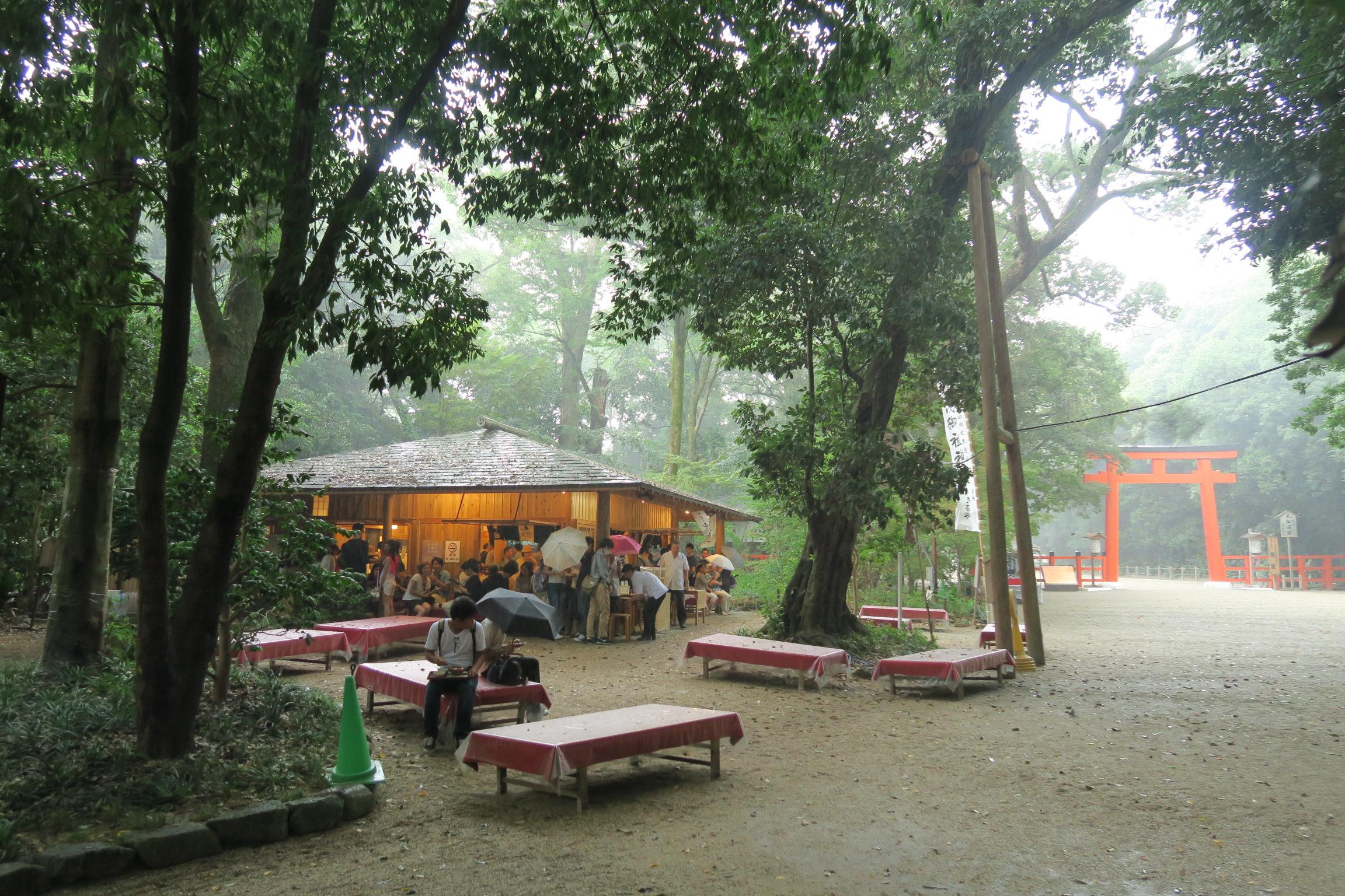 糺の森を歩いていると雨が降り出しました。木の葉が傘がわりになっていましたが、強くなると・・・