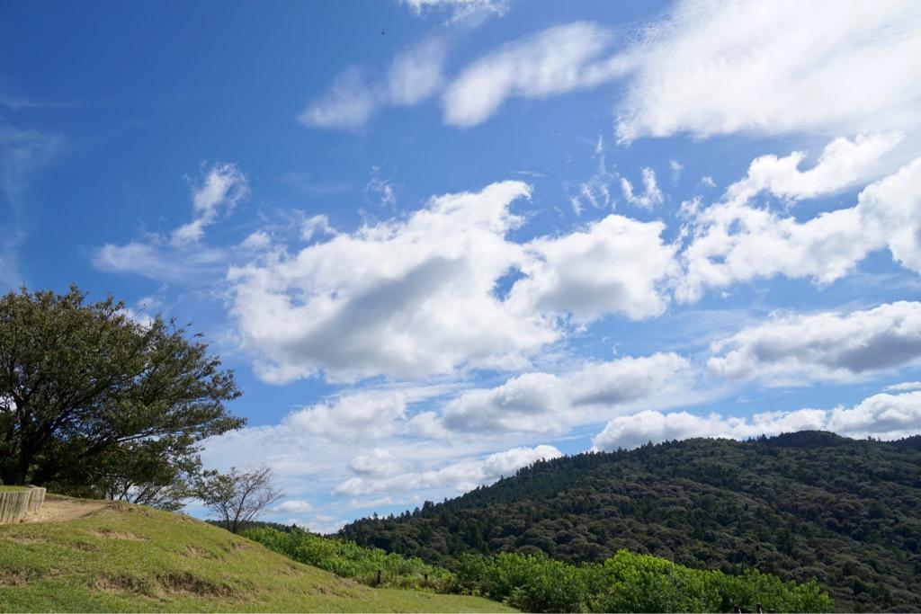 雲がずっと流れていきました。