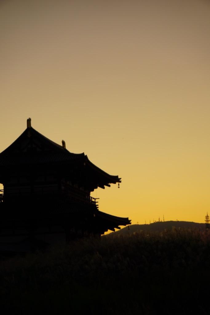 朱雀門とススキと生駒山。