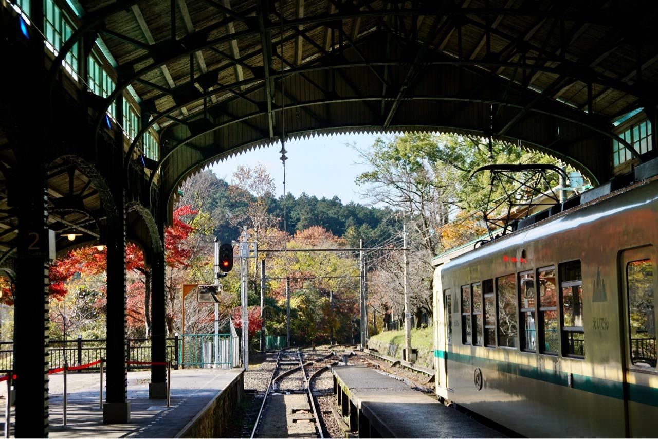 駅の周りにも紅葉がいっぱいです。