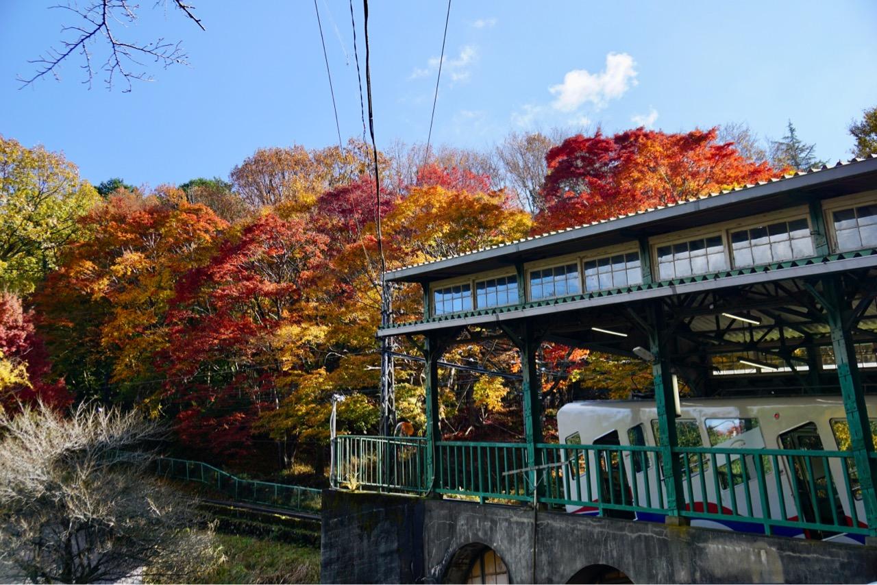 ケーブルの八瀬駅。奥の紅葉がもみじの小径です。