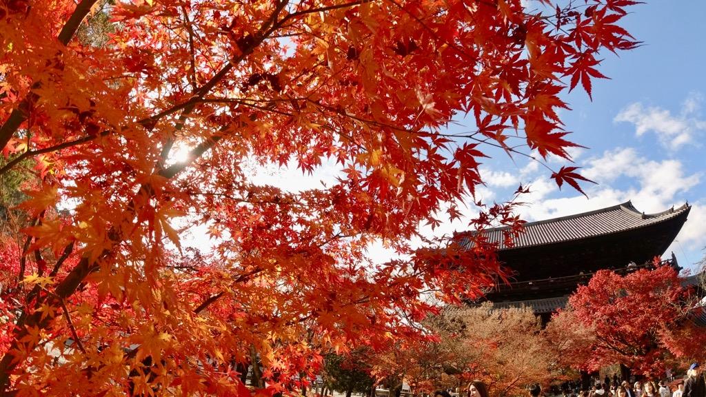 お次は南禅寺へ。大きい三門。