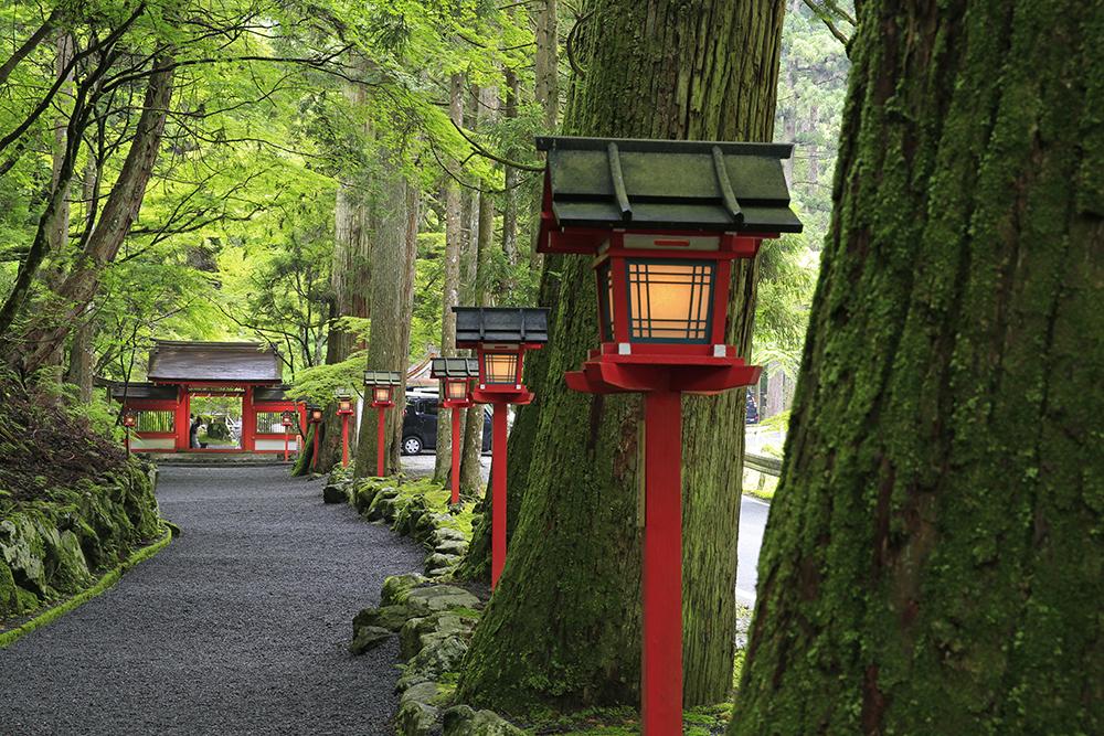 貴船川に沿って一番奥にある神社「奥宮」です。以前はココが本宮だったそうです。