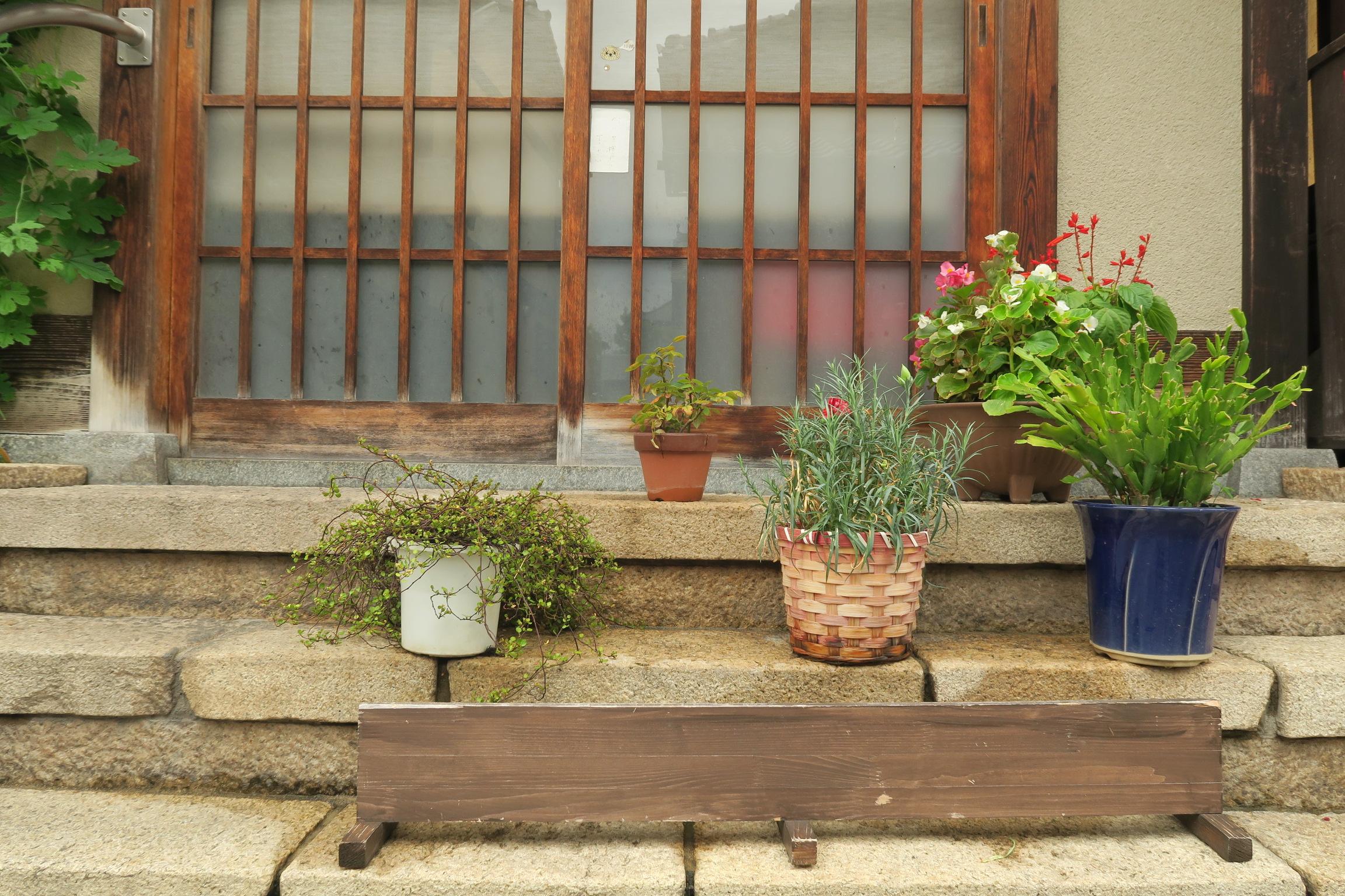 民家の玄関先に置かれていた植木鉢。雰囲気もよく思わず写真を撮ってしまいました。。。