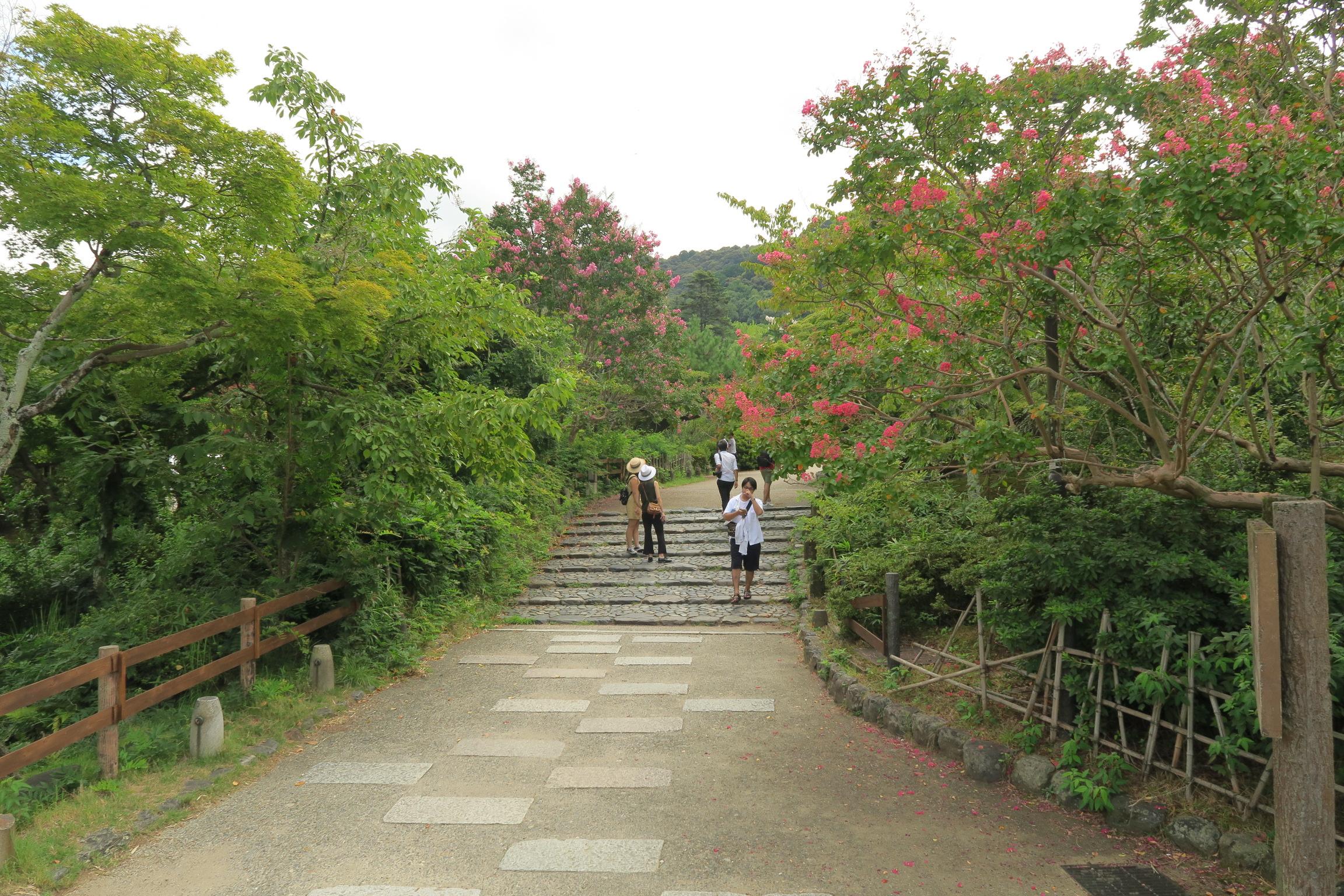 円山公園の池の間の道を真っ直ぐ行くと。。。